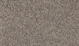 carpet silk indulgence tropical tan floor godfrey hirst