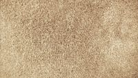 b_200_113_16777215_00_images_carpet_plush_samples_light-latte.jpg